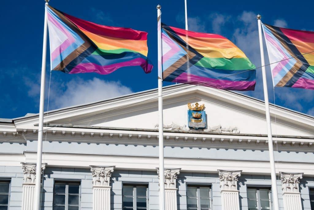 wat betekenen de kleuren van de progress-pridevlag?